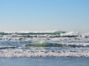 beach-1204401_1280
